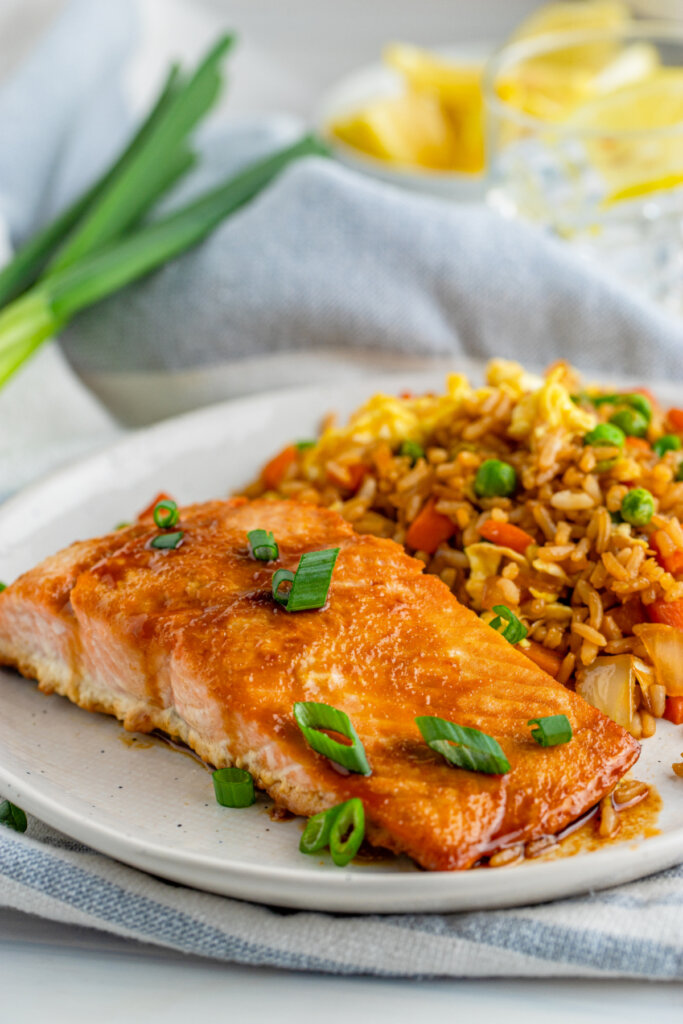 salmon and rice on plate