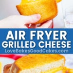 air fryer pin collage