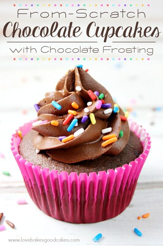 Chocolate Cupcakes with Chocolate Frosting with sprinkles.