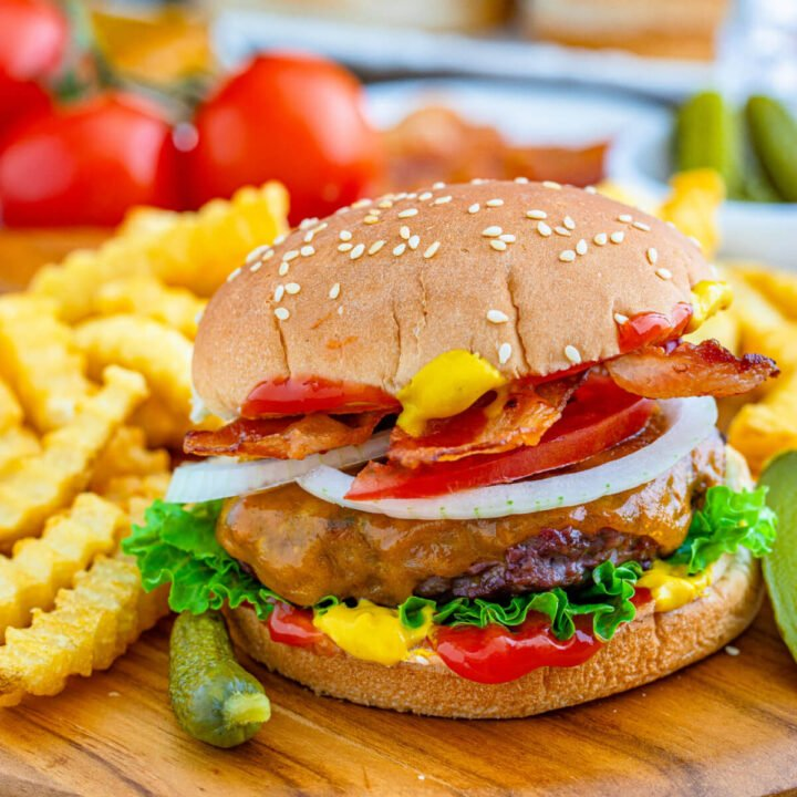 juicy and flavorful venison burger with fries on the side